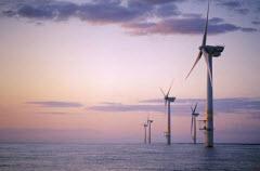 Parque eólico ao largo da Escócia poderá ser entregue à EDPR