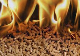 Peletes: Biomassa para aquecimento